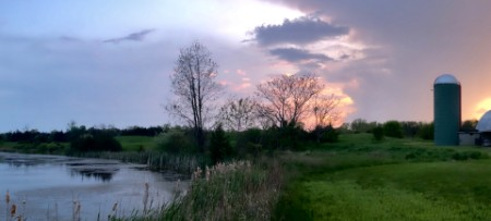 Evening sky at sunset over a pond surrounded by flora and fauna and an old farm silo in the background