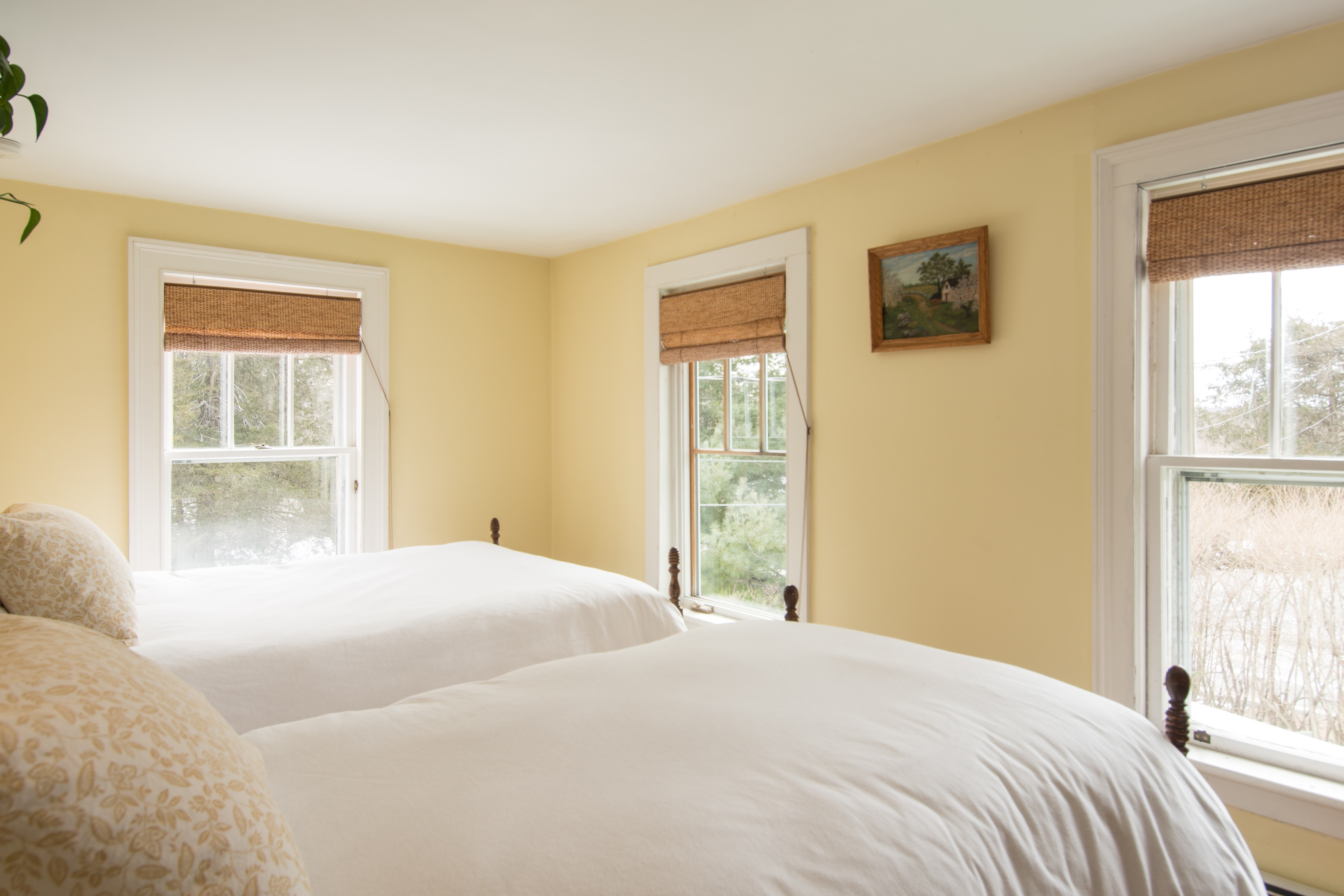 bedroom photo containing 2 twin sized beds and 2 windows and pale yellow walls