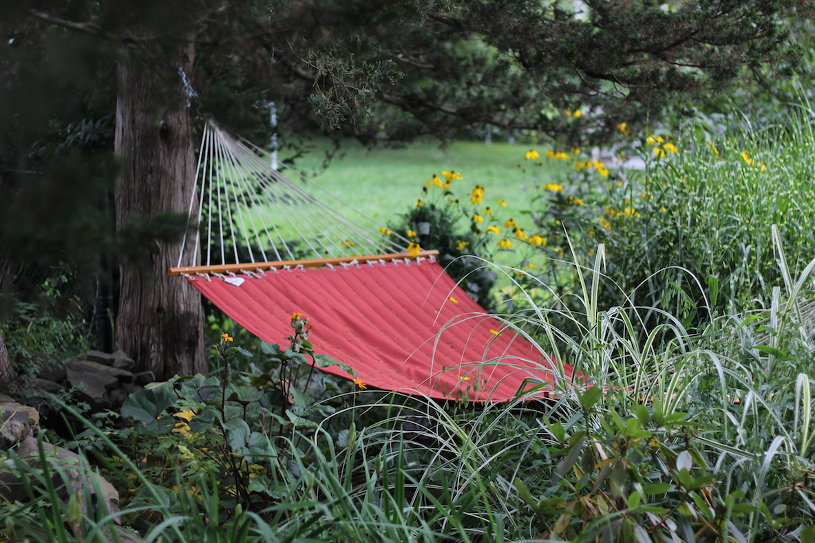 red hammock strung from a tree in a summer garden